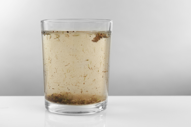 Água parada no condomínio? Evite esse perigo.