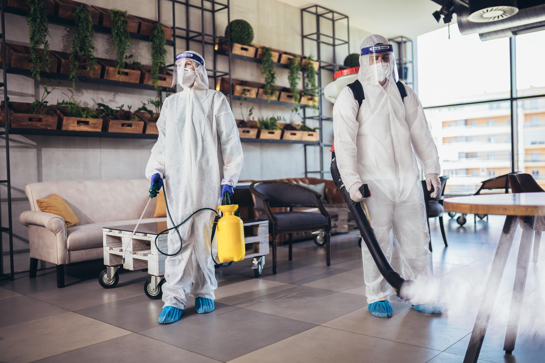 Limpeza, desinfecção, higienização e esterilização: entenda as diferenças